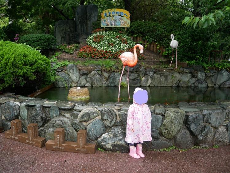 王子動物園のフォトスポット
